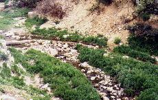 Small dam for irrigation channel